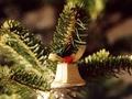 Jakie są zasady wręczania prezentów gwiazdkowych?