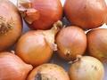 Jak uniknąć łez podczas krojenia cebuli?