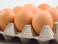 Oznaczenia jajek - wiedz co jesz!