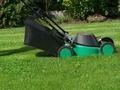 Jak często kosić trawnik?