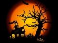 Wróżby i zabawy na Halloween