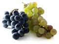 10 zalet winogron
