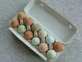 Co powinieneś wiedzieć o jajkach