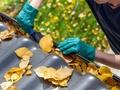 Masz dach pokryty blachodachówką? Pamiętaj o regularnym czyszczeniu