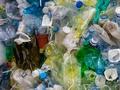 Jak segregować śmieci w Warszawie 2020?