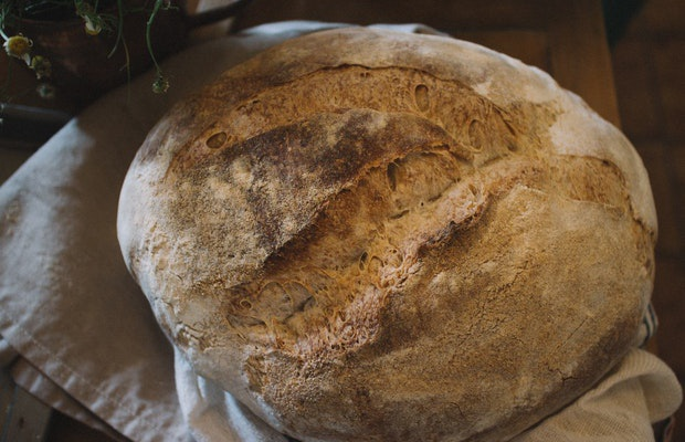 Jak samemu zrobić zakwas do chleba?