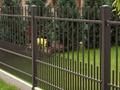 Jak zorganizować ogród bezpieczny dla dziecka?