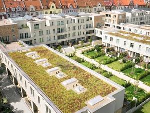 Bądź eko na własnym dachu